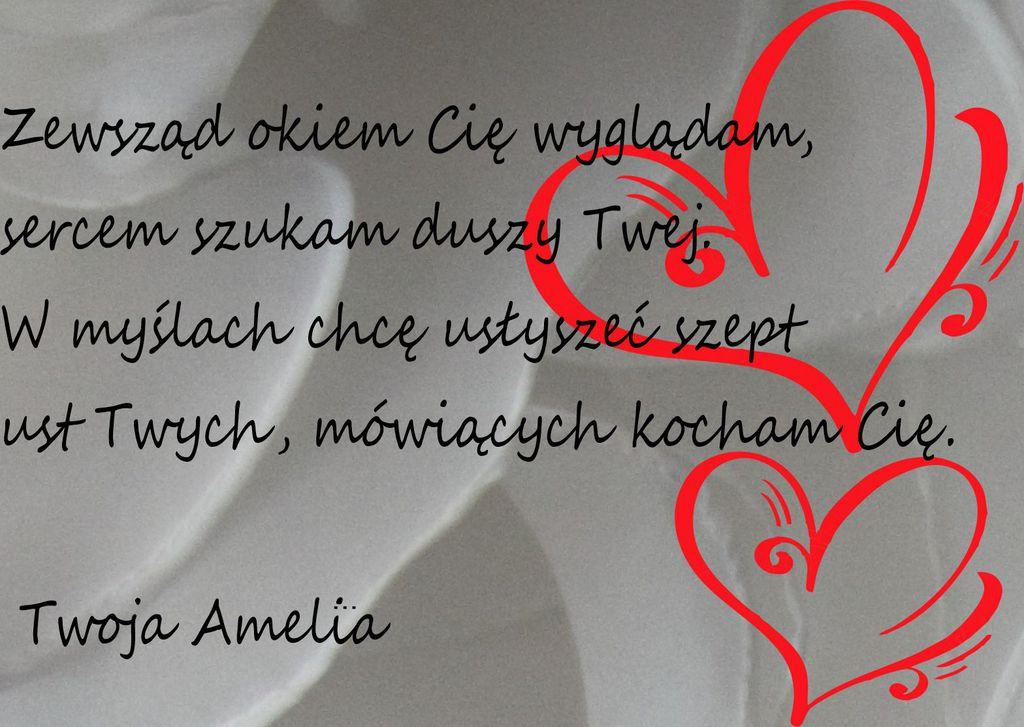 Amelia.jpeg