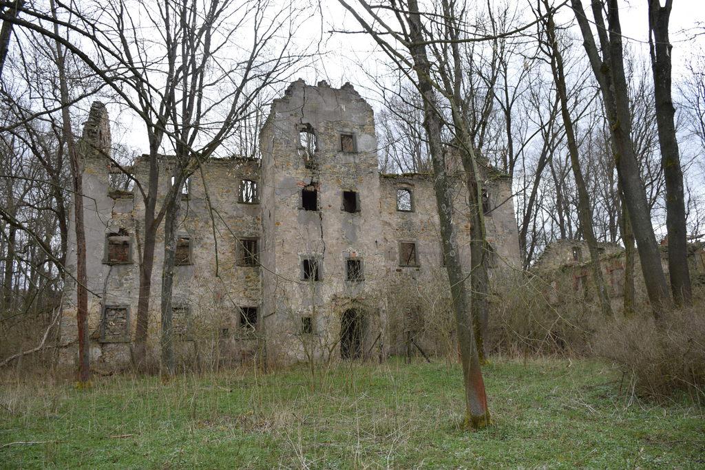 Ruiny renesansowego dworu w Kraszowicach