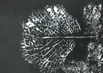 Drzewa 1.jpeg
